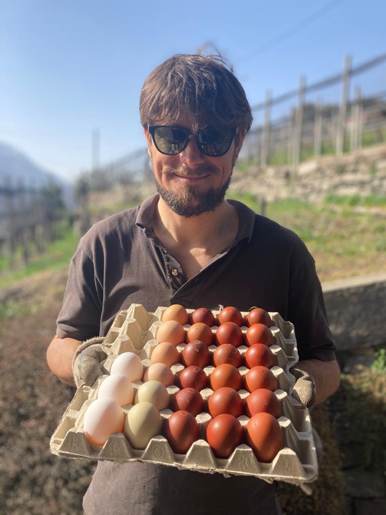 Pascal con i mano un cartone pieno di uova.